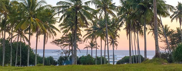 Medewi West Bali.png