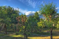 Bali Gecko Homestay Pemuteran West Bali North Bali