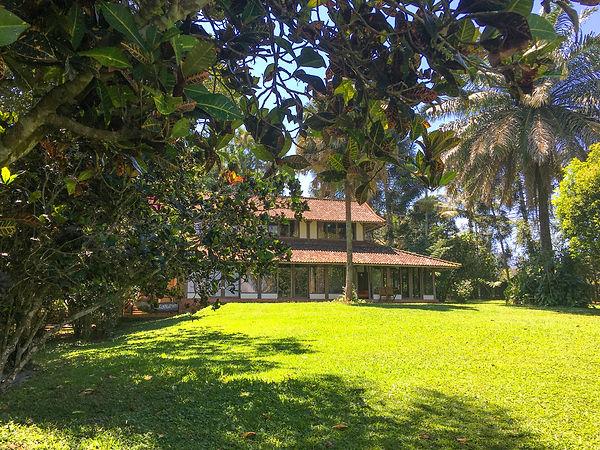 Temuku Pupuan West Bali.jpg