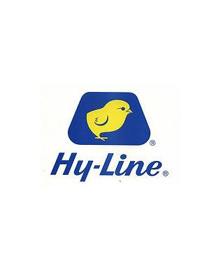 hy line.jpg