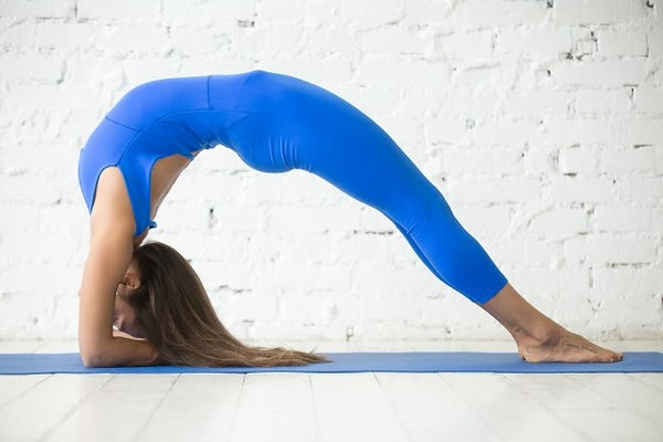 young-attractive-woman-elbow-bridge-pose-white-studio-backgr_1163-2314.jpg