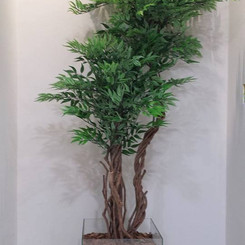 árvore veneza