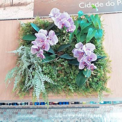 placa jardim vertical orquídeas, samambaias e folhagens verdes
