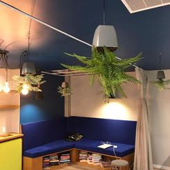 sky planter