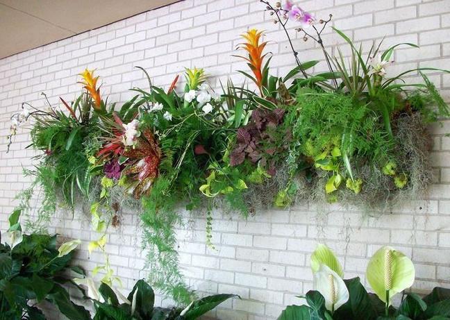 jardim vertical novo