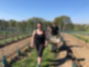 Capture d'écran 2019-04-20 à 20.28.59.pn