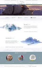 webdesign-Home-Francois-Beiger.jpg