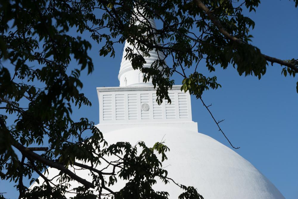 Anuradhapura._Sri_Lanka._©Lisa_Boniface-26
