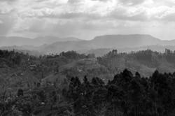 On_the_road._Sri_Lanka._©Lisa_Boniface-2-2