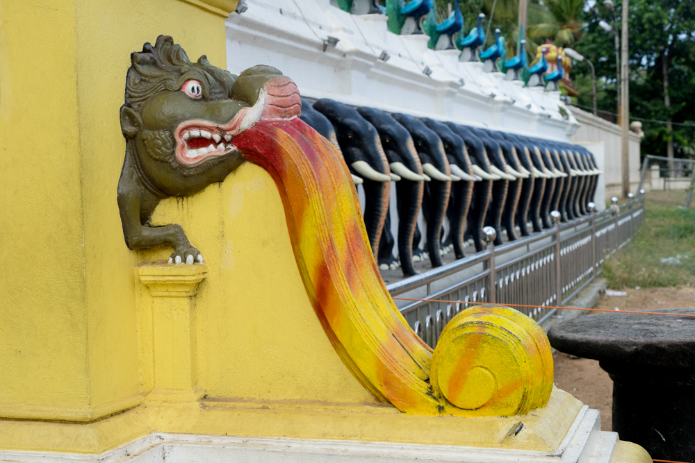 Tissamaharama._Sri_Lanka._©Lisa_Boniface-45