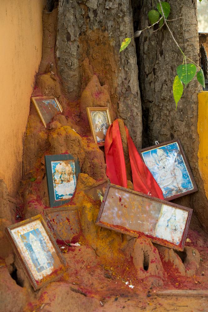 Trincolmalée. Sri Lanka. ©Lisa Boniface-16