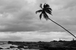 Tangalla._Sri_Lanka._©Lisa_Boniface-12