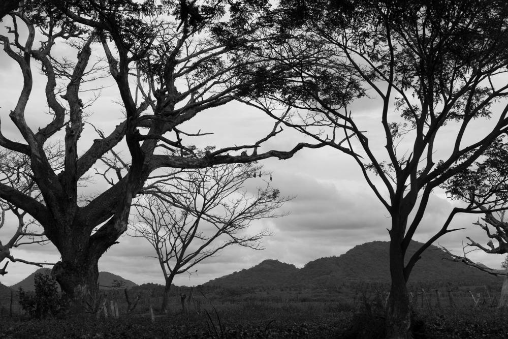 Tissamaharama._Sri_Lanka._©Lisa_Boniface-13