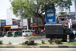 On_the_road._Sri_Lanka._©Lisa_Boniface-5