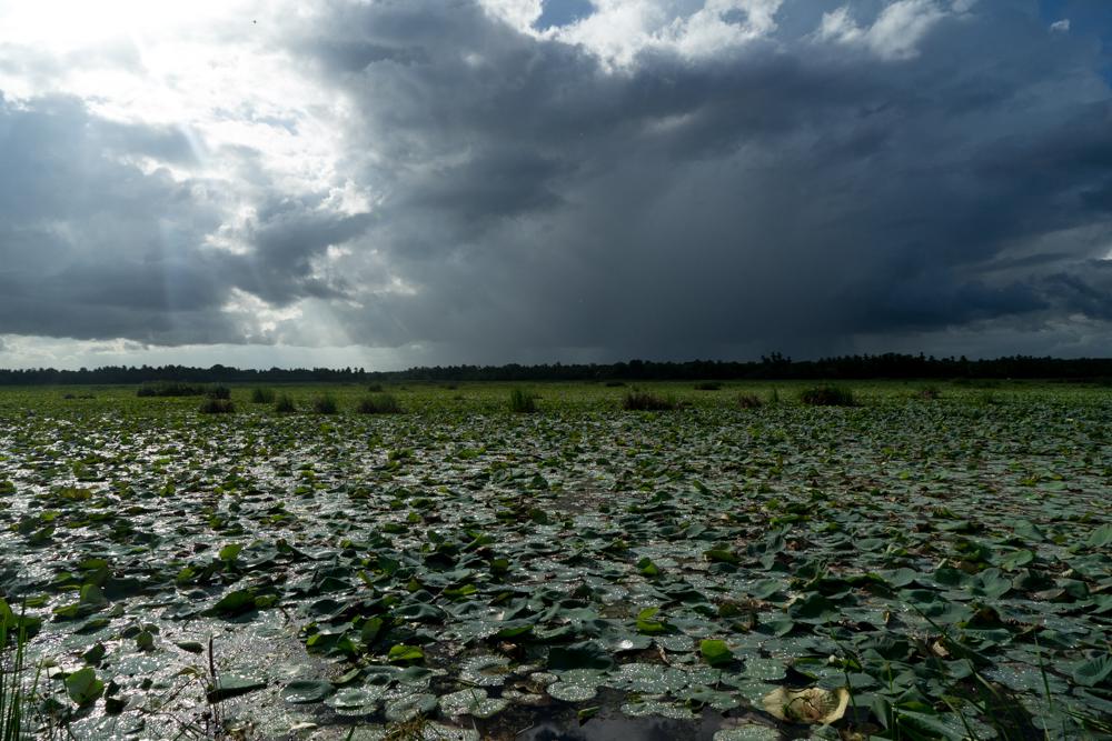 Tissamaharama._Sri_Lanka._©Lisa_Boniface-1