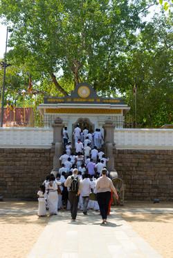 Anuradhapura._Sri_Lanka._©Lisa_Boniface-5