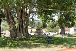 Anuradhapura._Sri_Lanka._©Lisa_Boniface-10