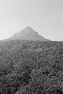 Adam's_Peak._Sri_Lanka._©Lisa_Boniface-61