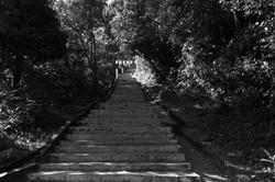 Adam's_Peak._Sri_Lanka._©Lisa_Boniface-58