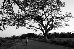 Tissamaharama._Sri_Lanka._©Lisa_Boniface-9