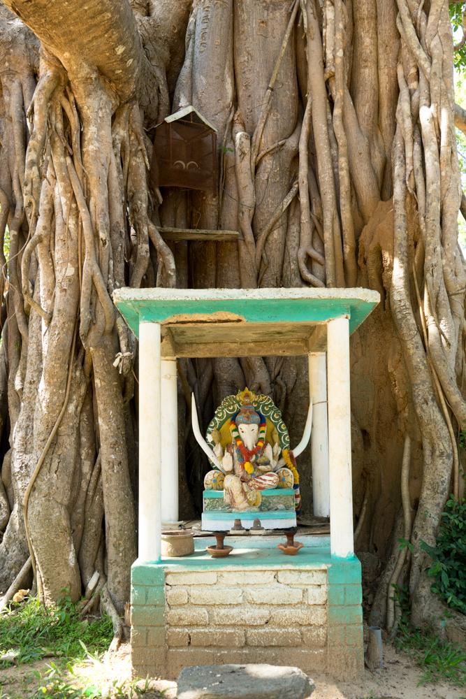 Sigiriya._Sri_Lanka._©Lisa_Boniface-18