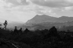 On_the_road._Sri_Lanka._©Lisa_Boniface-3-2