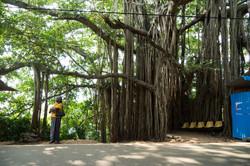 Trincolmalée. Sri Lanka. ©Lisa Boniface-15