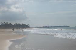 Hikkaduwa._Sri_Lanka._©Lisa_Boniface-14