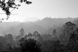On_the_road._Sri_Lanka._©Lisa_Boniface-1-2