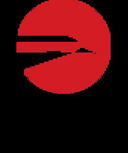 logo hawk.png