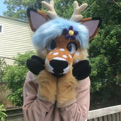 Ari the Deer