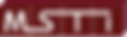 logo_msti_(2017) transparent_wo tagline.