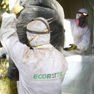 EcoRattic Rodent Control