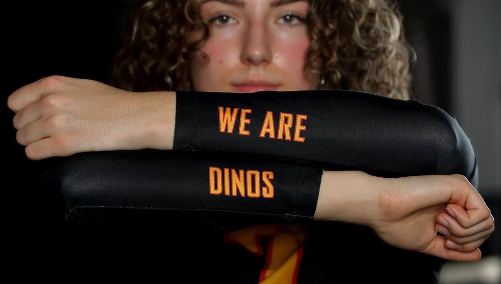 We are Dinos.jpg