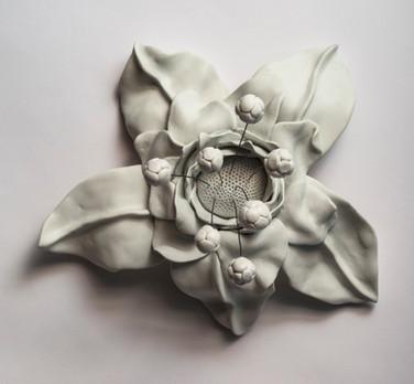 Carnivorous Flower 2(2014).jpg