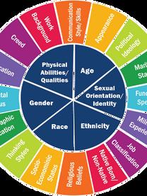 BCC Diversity.png