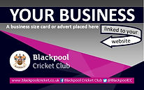 Business Card Promo Website.jpg