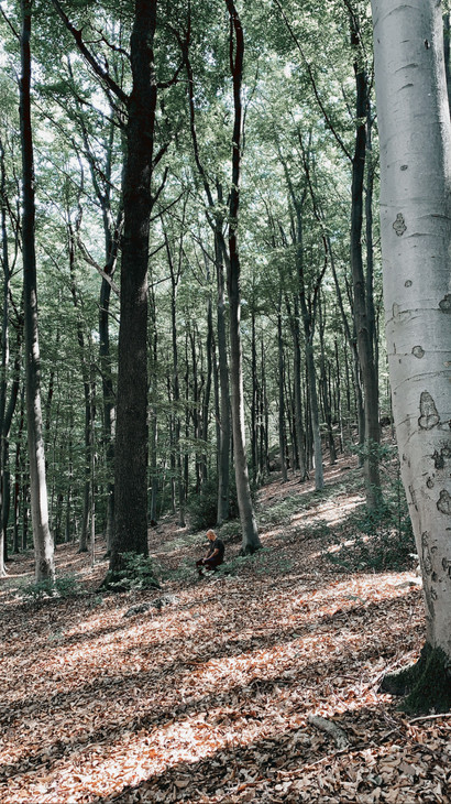 Mediteren-Ardennen-Retreat-Innerdoorway