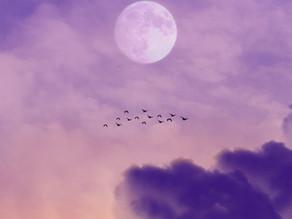 Volle Maan in Vissen woensdag 2 september 2020 | De wereld krijgt een spiritueel tintje