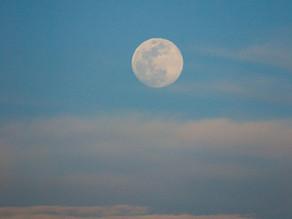 Volle maan 10 januari 2020 | Gebruik je intuïtie en creëer vernieuwing
