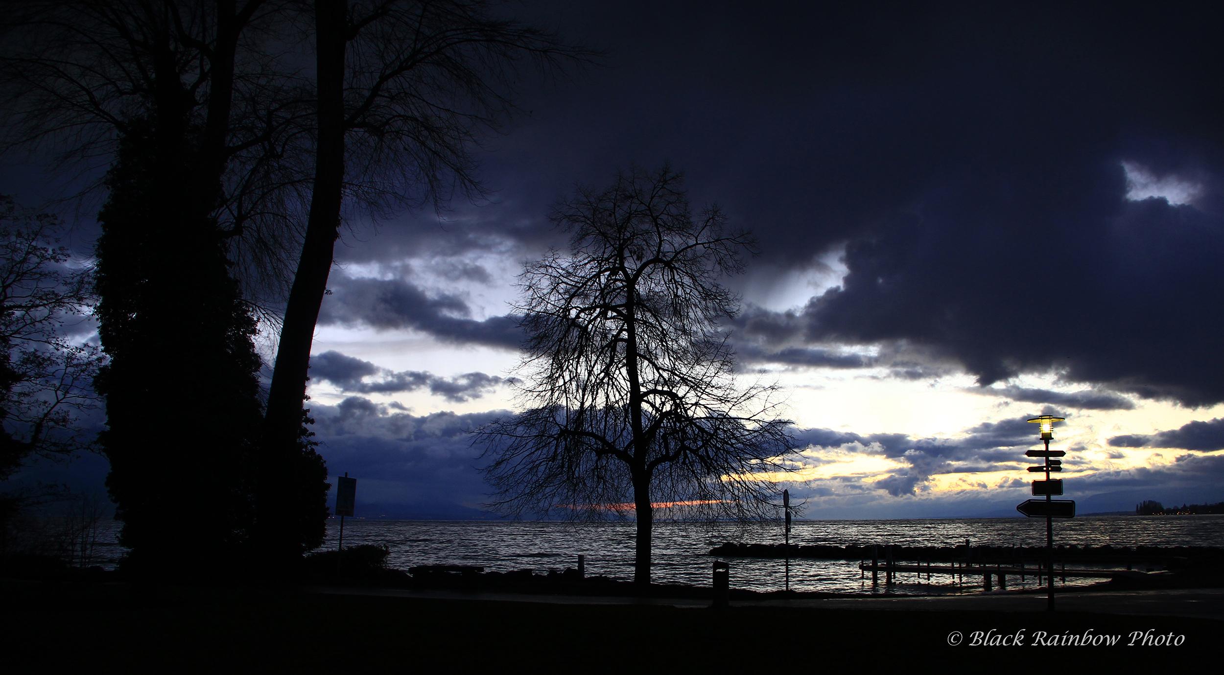Vidy, Lausanne, 2015