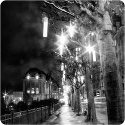 Avenue Benjamin-Constant
