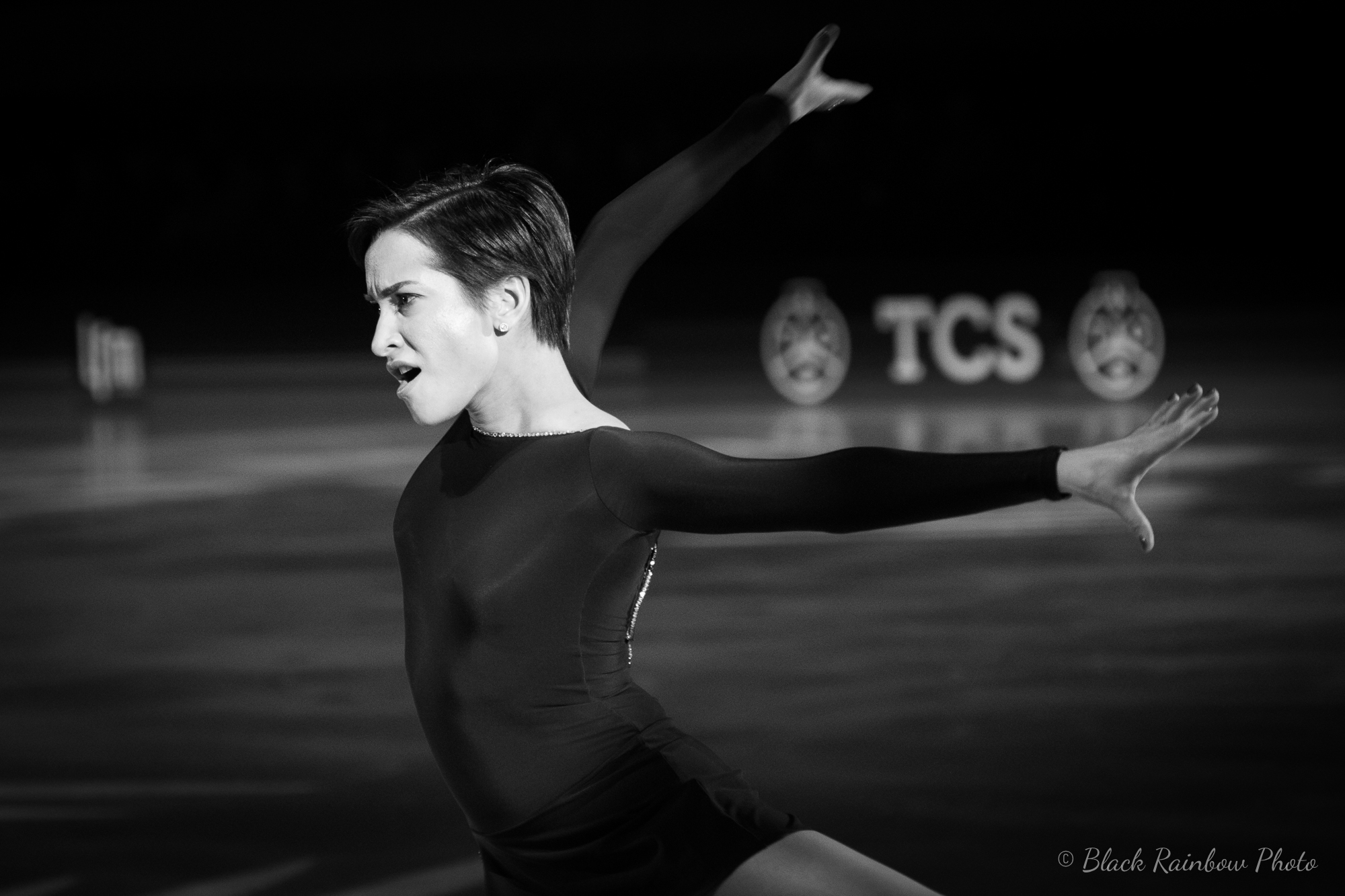Art on Ice-11