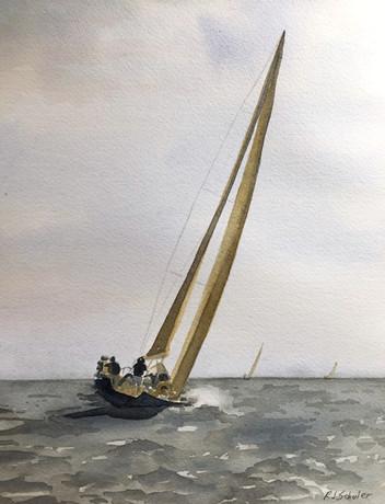 Schuler_2019-sailing1_w.jpg