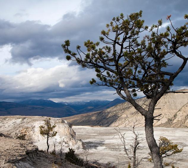 Yellowstone generation