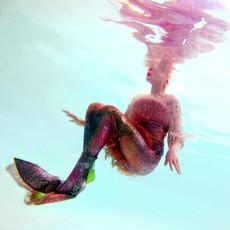 Curious Mermaid