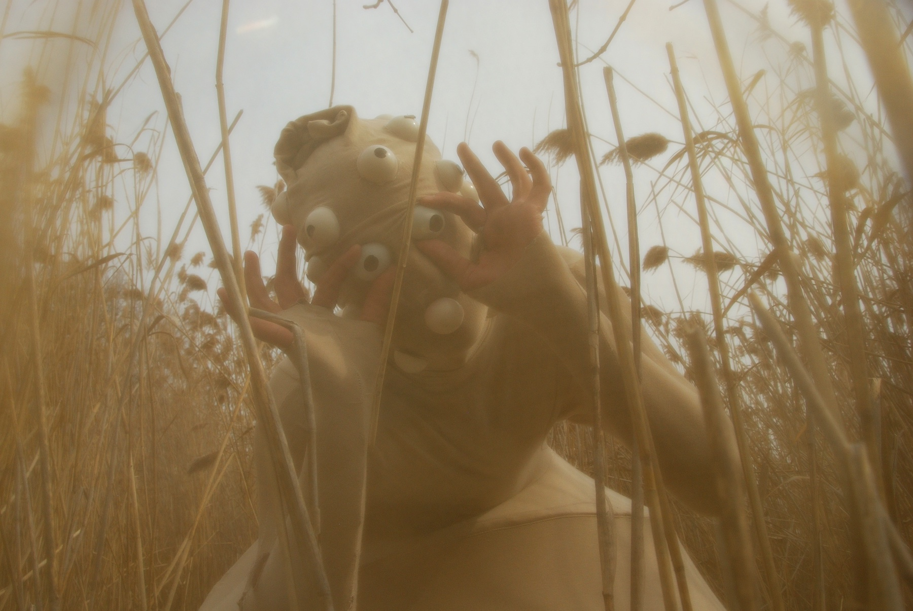 Reed Creature
