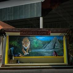 Macario Gomez bus stop