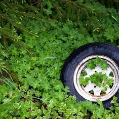 Ornamental tire