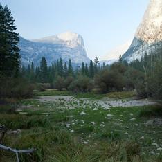 Yosemite Green_sm.jpg